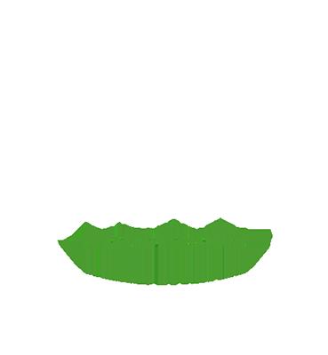 Buddhutt